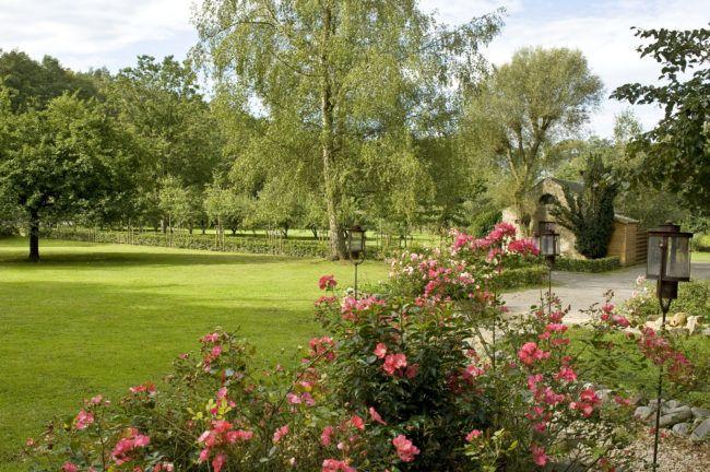 Romantische tuin appelboomgaard