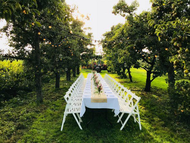 Lange tafel in boomgaard